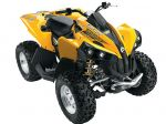 Can-Am  Renegade 800 R